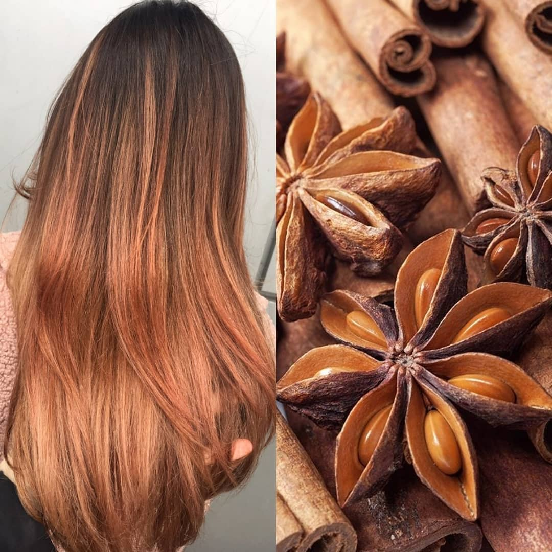 Exclusive Hair Colour Collection Tresses Colours,United Airlines Baggage International